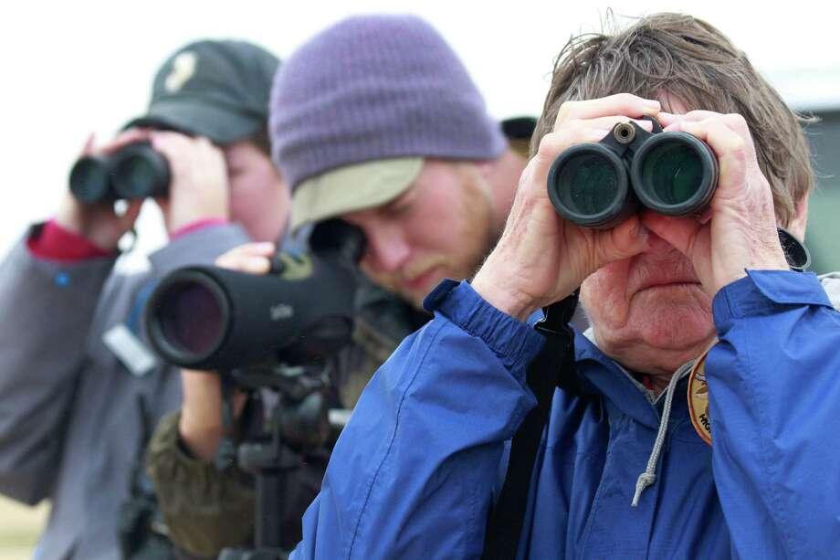 Houston Audubon Society members Loren Gallo, left, Pete Deichmann, center, and Winnie Burkett watch for oiled birds at the Bolivar Flats Shorebird Sanctuary Monday, March 24, 2014 in Bolivar. Photo: Melissa Phillip, Houston Chronicle / © 2014  Houston Chronicle