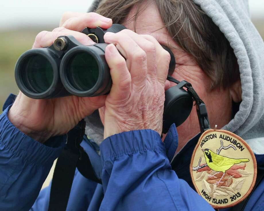 Houston Audubon Society member Winnie Burkett watches for oiled birds at the Bolivar Flats Shorebird Sanctuary Monday, March 24, 2014 in Bolivar. Photo: Melissa Phillip, Houston Chronicle / © 2014  Houston Chronicle
