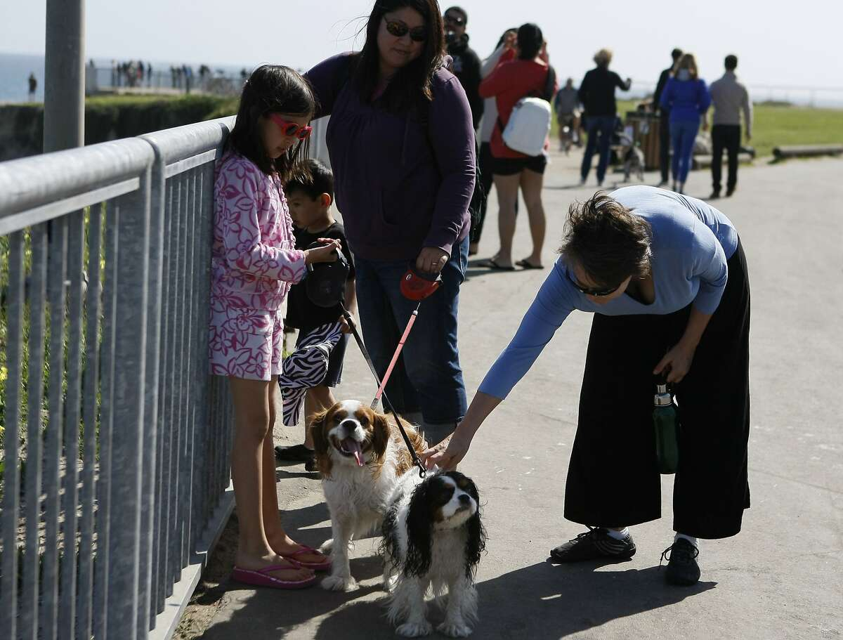 Lisa Geiszler, 47, (right) pets dogs held by Kyra Fradenburg, 8, (left) and Christine Fradenburg, 37, (center) next to Lighthouse Field State Beach on March 22, 2014 in Santa Cruz, Calif. Geiszler was diagnosed with chronic fatigue immune deficiency syndrome in 2002 and is finally able to do physical activities again since being put on a new treatment.