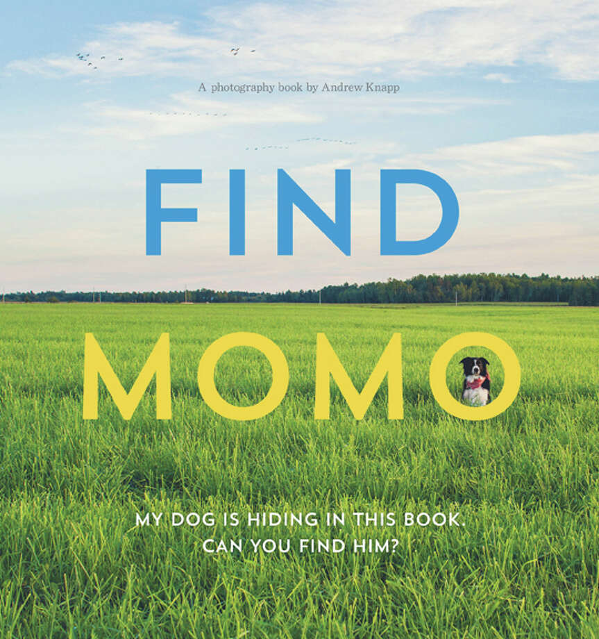 """Find Momo"" by Andrew Knapp"