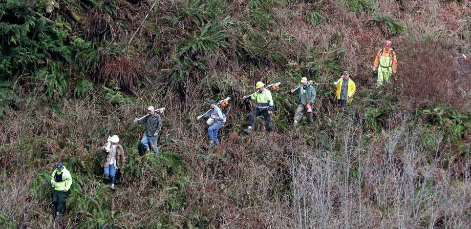 Volunteers with chainsaws march down a rugged path toward the scene of a deadly mudslide Tuesday in Arlington.  Photo: Elaine Thompson, Associated Press / AP2014