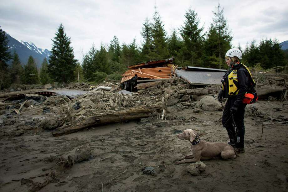 A rescue dog and handler prepare to enter the debris field. Photo: JOSHUA TRUJILLO, SEATTLEPI.COM / SEATTLEPI.COM