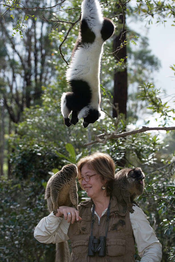 "The scientific and environmental work of Stony Brook University professor Patricia Wright is part of the new 3D IMAX film, ""Island of Lemurs: Madagascar,"" opening Friday, April 4, at the Maritime Aquarium at Norwalk. Wright will be speaking there after a screening on Thursday, April 17. Photo: Contributed Photo / Connecticut Post Contributed"
