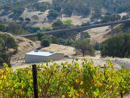 Wine Tree Farm sits on a 40-acre ranch in Amador County.