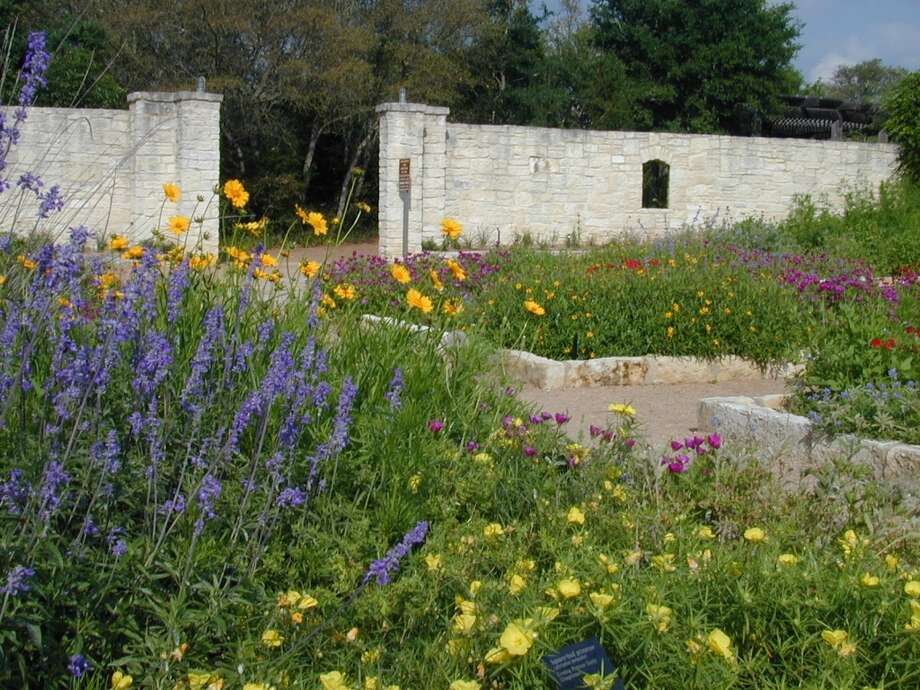 Wildflowers bloom in demonstration gardens at the Lady Bird Johnson Wildflower Center in Austin. Photo: Courtesy Photo, Lady Bird  Johnson Wildflower Center