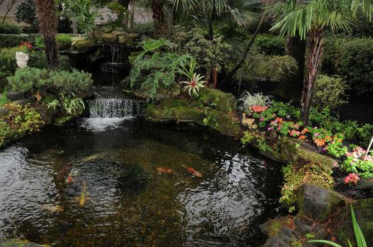 Tour showcases four elegant kingwood gardens houston for Koi for sale houston