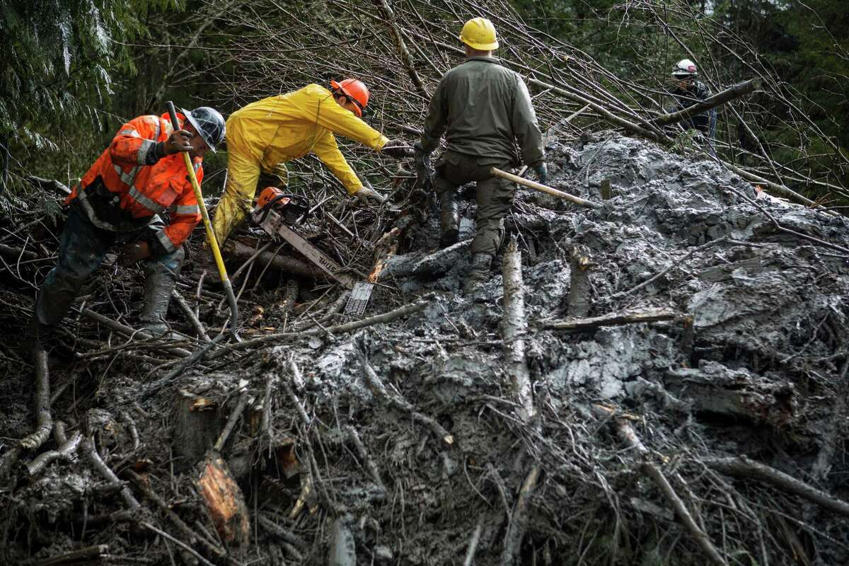 Rescue workers use chainsaws and other tools to dig through a tangle of trees and mud marked as having a possible victim of the Oso mudslide along State Route 530 near Darrington, Wash. Rescue and recovery workers slogged through thick mud and debris as rain poured down on the area one week after the devastating disaster. Photographed on Saturday, March 29, 2014.