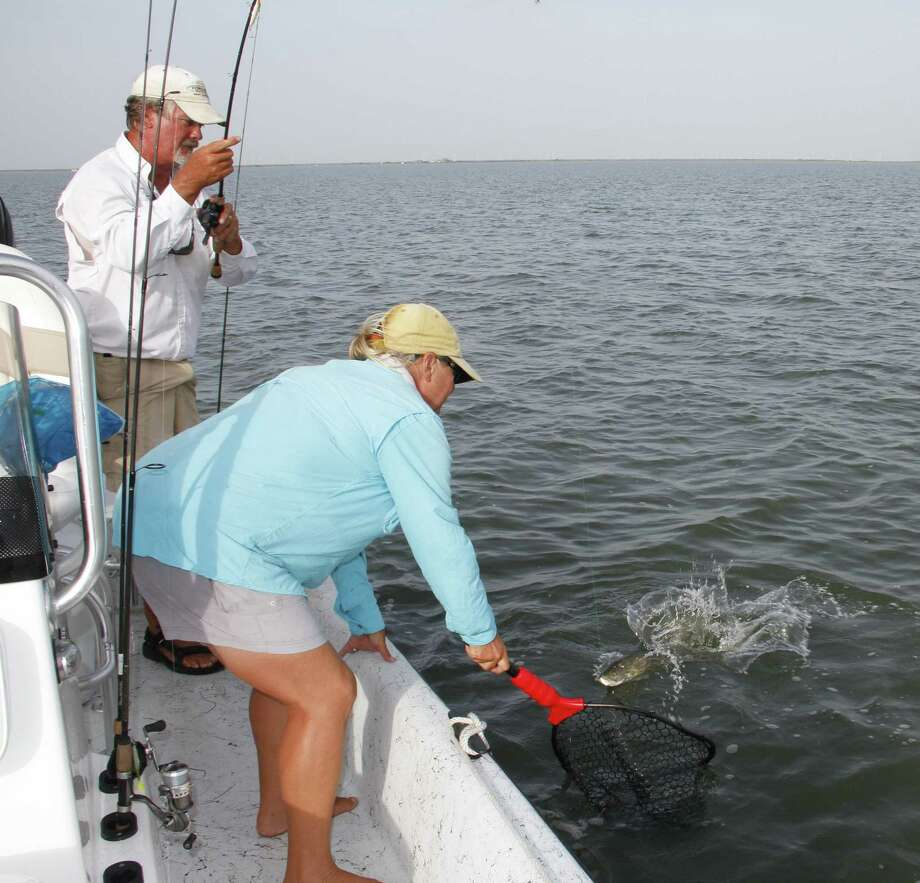 Beginning Sept. 1, anglers fishing Texas' middle and lower coast will operate under a five-fish daily bag limit for speckled trout. Upper coast bays, including Galveston Bay and Sabine Lake, will remain under the 10-trout daily limit in effect since 1989. Photo: Picasa
