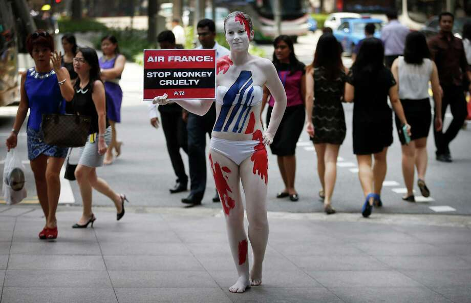 "A member of People for the Ethical Treatment of Animals (PETA) Asia covered in body paint to resemble a ""bloody"" Air France logo and holding a sign that reads, ""Air France: Stop Cruelty to Monkeys"", stands in streets of the financial district on Thursday, March 27, 2014 in Singapore. She was doing this as a plea for the lives of animals outside Air France's office in Singapore, to protest the company's policy of shipping primates to laboratories where they were killed for animal testing. Photo: Wong Maye-E, AP / AP"