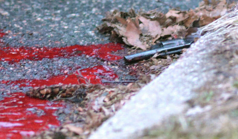 In this March 28, 2014 file photo, a revolver lies in a pool of blood in the street next to Heriberto Pagan's car, in the Rosebank section of the Staten Island borough of New York, Friday, March 28, 2014. Police say that Pagan shot his grandson, Michael Feliciano, in the head before killing the Feliciano's girlfriend, Claritle Huerta. Police say Pagan then got in his car, drove a few blocks and turned the gun on himself. Feliciano told the Daily News from his hospital bed that Huerta called him on his way home Friday evening to tell him that his grandfather was there and wanted to talk to him. (AP Photo/Staten Island Advance, Bill Lyons, File) Photo: Bill Lyons, AP / Staten Island Advance