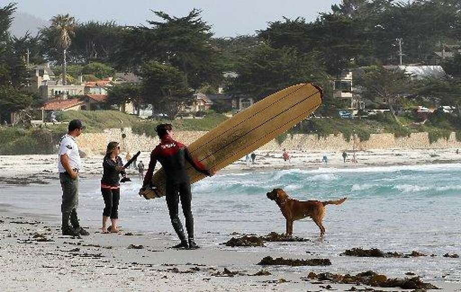 CARMEL: From its beaches to its stores, Carmel is one of the most dog friendly places you'll find in California. (Drive time: 2 hours) Photo: Sean Culligan, SFC