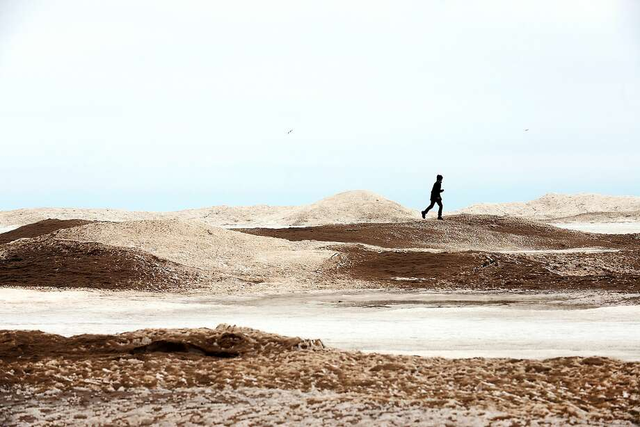 Frozen dunes: Matt Louis runs over icy sand mounds along Lake Michigan at Holland State Park in Holland, 
