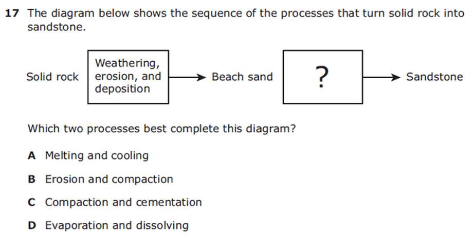 Grade 5 ScienceAnswer: C Photo: Texas Education Agency