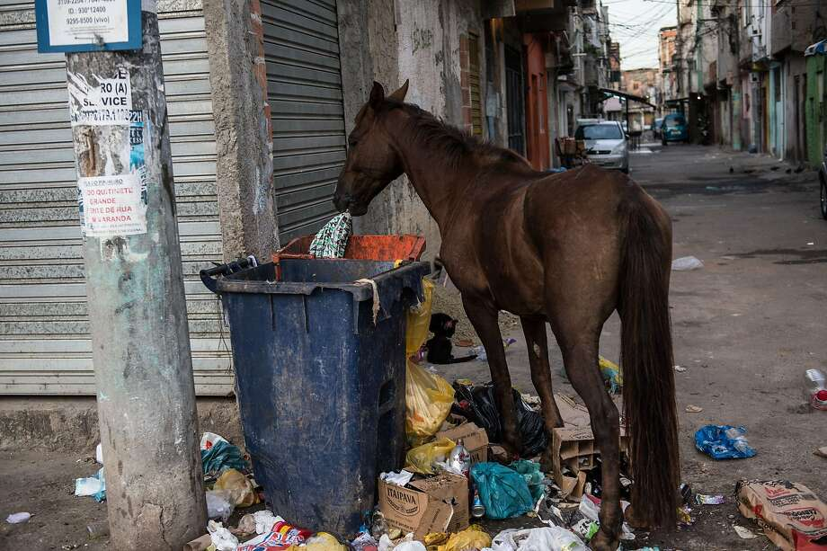 A horse eats garbage from a trash bin in the Favela da Mare shantytown of Rio de Janeiro, a neighborhood that city officials would rather not have soccer fans visit during the World Cup. Photo: Yasuyoshi Chiba, AFP/Getty Images