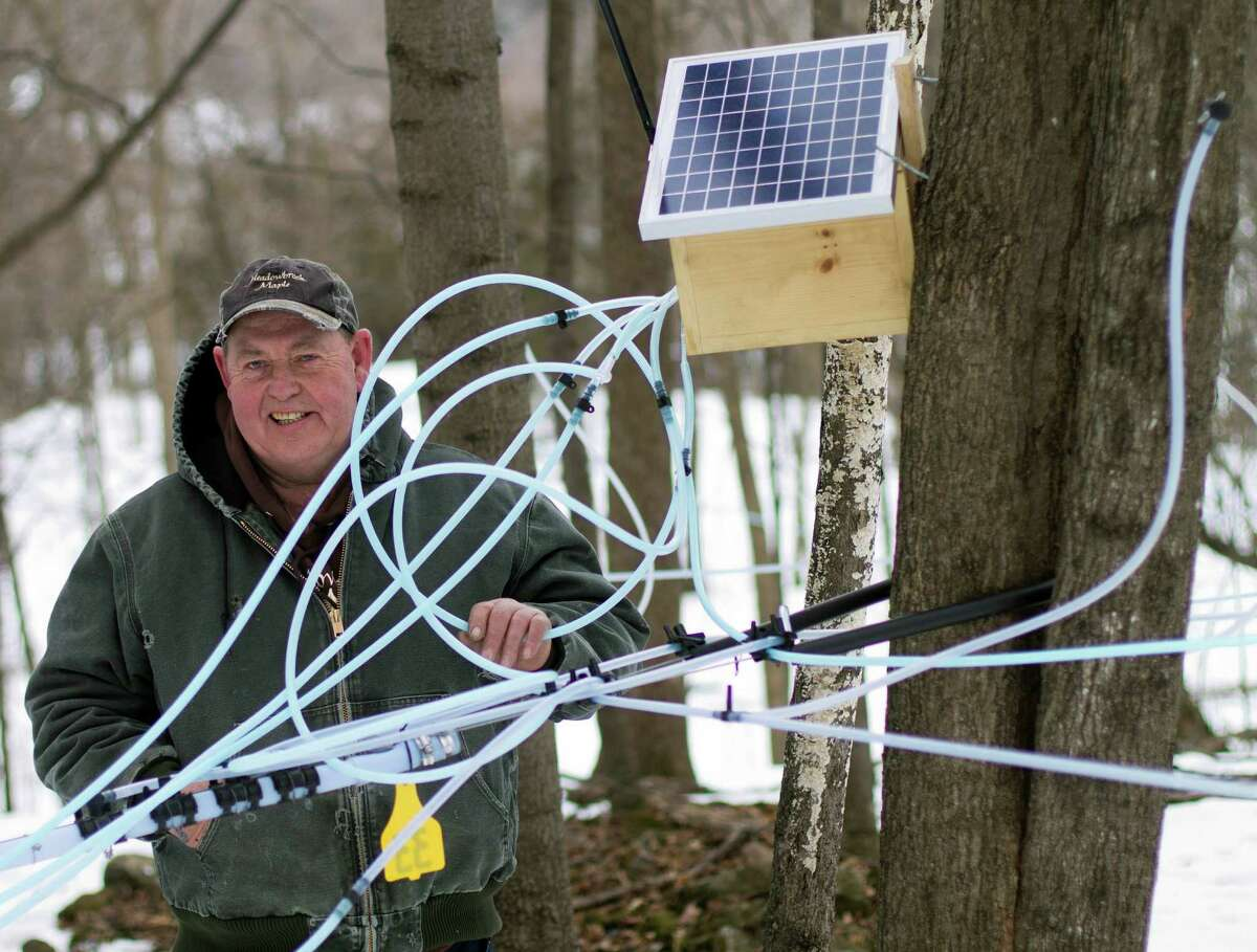 In this photo taken Friday March 21, 2014, maple syrup producer Donnie Richards poses with sap lines on a maple tree and his wireless radio unit box containing sensors that monitor pressure on sap lines in Milton, Vt. Richards has about 5,000 taps, with about 18 miles of tubing spread out over more than 100 acres and uses the wireless sensors to monitor the flow of sap that provides information immediately on a smart phone of tablet computer. (AP Photo/Holly Ramer) ORG XMIT: CON201