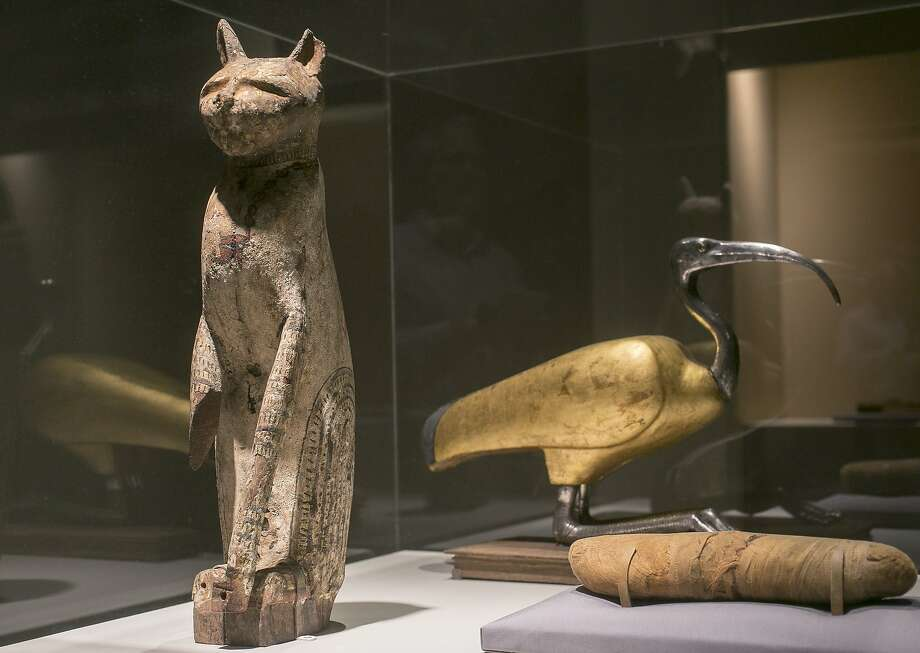 A cat coffin with mummy (above left) and an ibis coffin indicate the prominent position animals held within Egyptian society. Photo: Damian Dovarganes, Associated Press