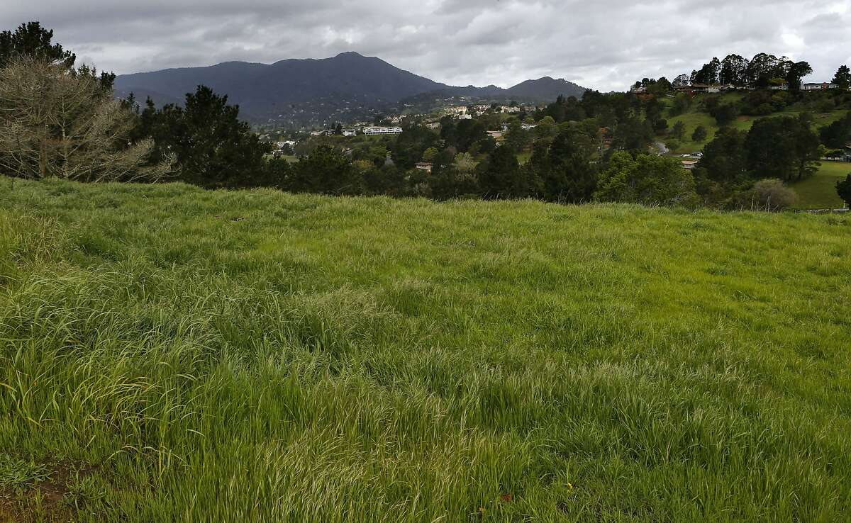 A grassy hillside is seen against Mt. Tamalpais on the campus of the Golden Gate Baptist Theological Seminary in Mill Valley, Calif. on Tuesday April 1, 2014