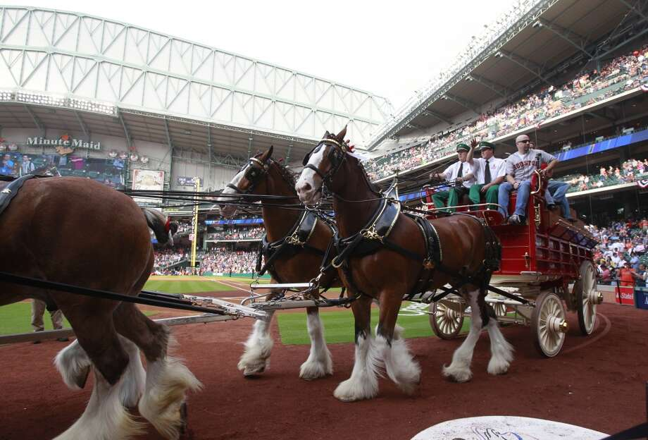 The Budweiser Clydesdales were in attendance for Opening Day at Minute Maid Park. Photo: Melissa Phillip, Houston Chronicle