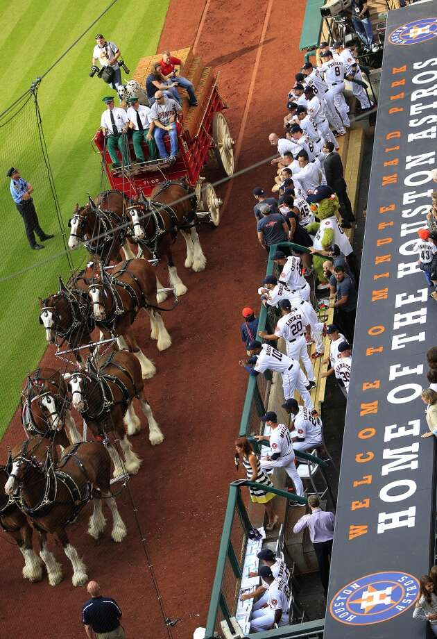 Budweiser Clydesdales participate in the Astros festivities on opening day. Photo: Karen Warren, Houston Chronicle