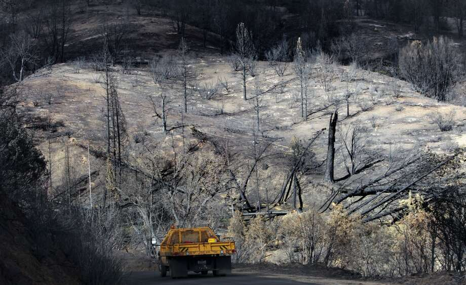 Burned hillsides and trees along Cherry Lake road near Groveland, Calif., on Wednesday Sept. 25, 2013, following the massive Rim Fire which erupted on August 17, 2013 and has burned more than 257,000 acres. Photo: Michael Macor, The Chronicle