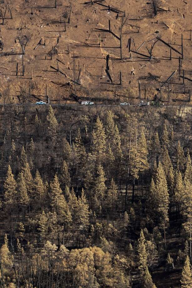 Barren hillsides and burned trees along Cherry Lake road near Groveland, Calif., as work crews repair roads and clear debris, following the massive Rim Fire which erupted on August 17, 2013 and has burned more than 257,000 acres. Photo: Michael Macor, The Chronicle