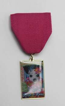 Fiesta 4 Paws 2014 Medal is made by 4 Paws Animal Hospital and Dr. Olga Jaimez. She hands out medal at her annual and elaborate Fiesta 4 Paws pet contest in which pets and their owners compete for best Fiesta costumes and floats. She also gives medals away during the King William Parade, in which 4 Paws Animal Hospital is represented in a float. The medal features Dr. Jaimez's 13-year-old Chihuahua Pippi. Photo: Juanito M. Garza, San Antonio Express-News / San Antonio Express-News
