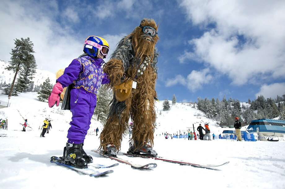 Bogus ski bunny: Four-year-old Lily Eschen and her Chewbacca dad, Christian, make their way to the lift on the beginner's slope at Bogus Basin Mountain, Idaho. Photo: Kyle Green, Associated Press