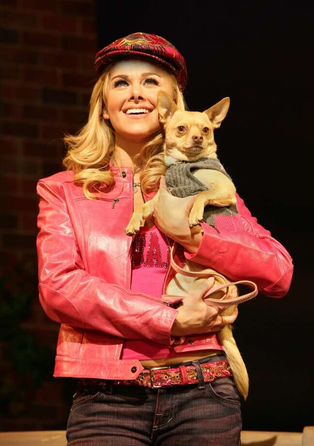 "For those who love lawyers, pink, dogs and shoes: ""Legally Blonde"" Photo: Joan Marcus"