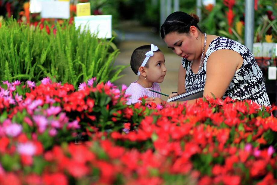 Celeste Flores, 6, who is undergoing treatment for leukemia, sketches with her mother, Mayra, as a group of young cancer patients from The University of Texas MD Anderson Cancer Center Children's Art Project painted and drew art inspired by plants and flowers at Cornelius Nursery. Photo: Johnny Hanson, Houston Chronicle / © 2014  Houston Chronicle