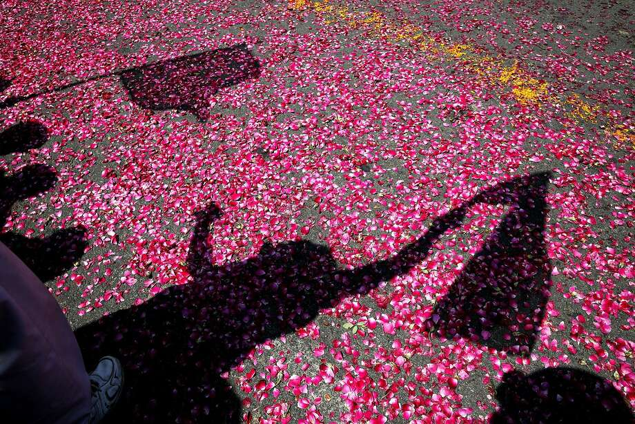 Shadows of flag-waving supporters are cast on flower petals thrown by them as India's ruling Congress party president Sonia Gandhi arrives to file her nomination papers for the upcoming general elections, in Rae Bareli, in the northern state of Uttar Pradesh, India, Wednesday, April 2, 2014. India will hold national elections from April 7 to May 12, kicking off a vote that many observers see as the most important election in more than 30 years in the world's largest democracy. (AP Photo/Rajesh Kumar Singh) Photo: Rajesh Kumar Singh, Associated Press