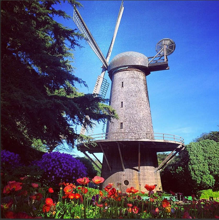 "Susie D., or @susiefoo, took this photo of the Dutch windmill in the park because ""the poppies were so awesome I  had to get a shot of them."""