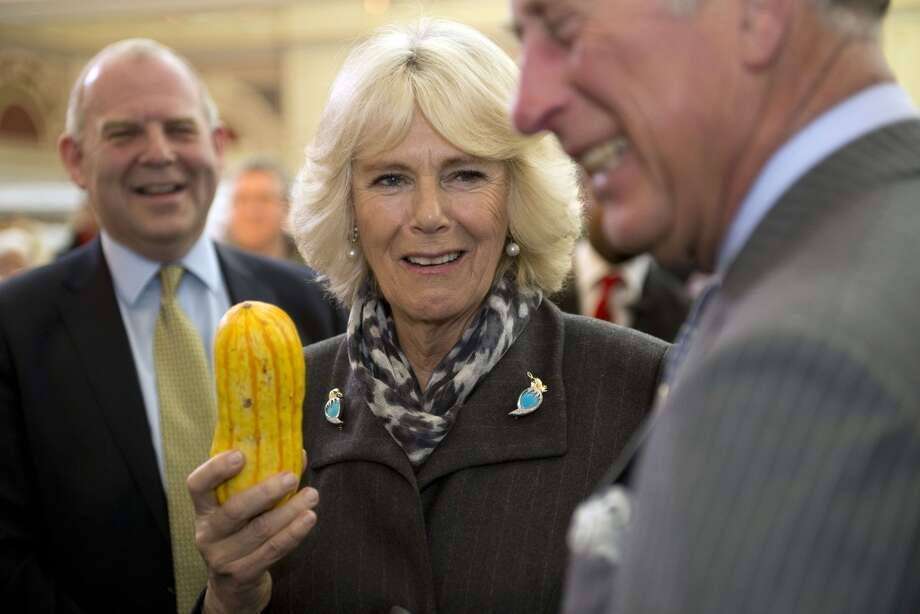 Great Britain:  Camilla, Duchess of Cornwall, holds a squash as she shares a joke with Britain's Prince Charles, Prince of Wales (R) during a visit to the edible garden show at Alexandra Palace in London. Photo: CHRIS HARRIS, AFP/Getty Images