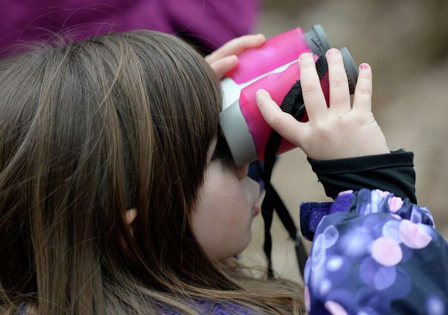 Mia Paglialonga, 4, of Colonie uses binoculars albeit backwards during her time on the trail on the Signs of Spring hike April 4, 2014 at the Discovery Center at the Albany Pine Bush Preserve in Albany, N.Y.   (Skip Dickstein / Times Union) Photo: Skip Dickstein / 00026375A