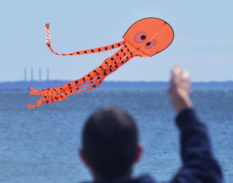 Dan Fanelli of Stamford flies an octopus kite during the annual Kite Flying Festival sponsored by the Greenwich Arts Council and the Town Department of Parks and Recreation at Greenwich Point, Saturday, April 5, 2014. Photo: Bob Luckey / Greenwich Time