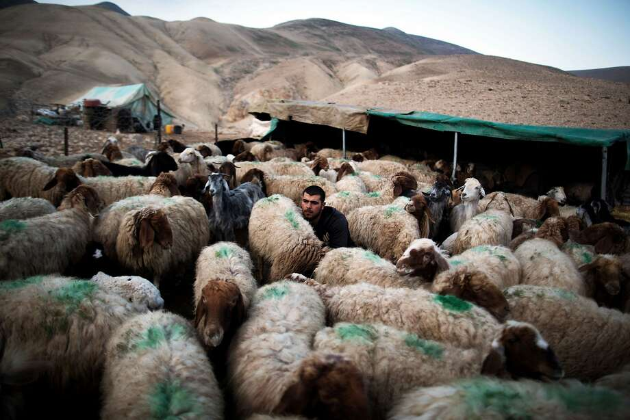 TO GO WITH AFP STORY BY SHATHA YAISH