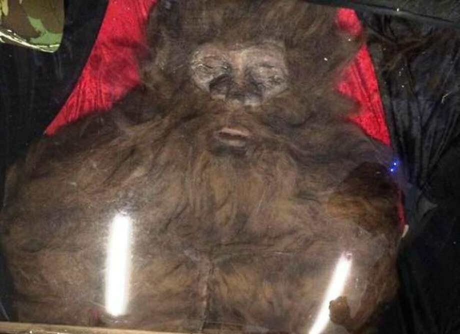 Rick Dyer, who had previously been involved in a 2008 Bigfoot hoax, has announced that his latest bigfoot body was a hoax. Dyer and his Bigfoot crew had a falling out last week which lead to Dyer's reveal that the body he had been showing off at his nationwide tour was a hoax. Andrew Clacy, a spokesman from Dyer's Bigfoot crew, confronted Dyer about the authenticity of the body and was told by Dyer that it was a fake.The body was made by Twisted Toy Box in Washington and was constructed with latex, foam and camel hair. Chris Russell, of Twisted Toy Box, said he signed an nondisclosure agreement with Dyer to keep this a secret.  Dyer revealed the body was a hoax, but maintains that he did shoot and kill a real Bigfoot, he said he didn't take that on tour out of fear that it would be stolen.