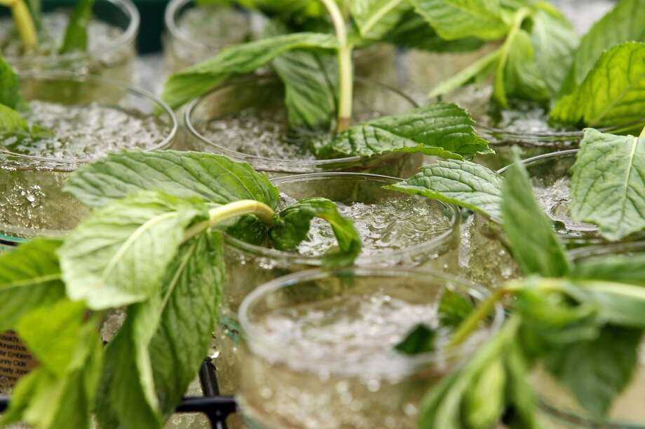 Drink: Mint juleps served to party guests by Betty Draper. (Getty Images) Photo: Al Bello, Getty Images