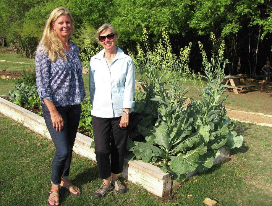 ABOVE: Karla Toye, left, and Linda Hallstead are two of many volunteers who tend to the Alamo Heights community garden.                    AT LEFT: This architectural rendering shows a shade structure for the garden. Photo: Edmond Ortiz / Alamo Heights Weekly