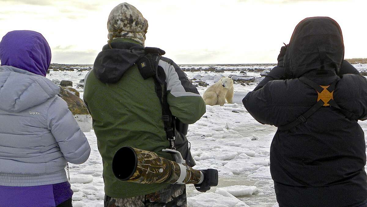 Lodge guests watch a bear on the frozen shoreline.
