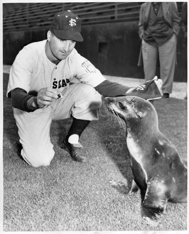 San Francisco Seals catcher Ray Orteig cozies up to Major, the team's mascot, in 1950. Photo: Bill Young / The San Francisco Chronicle / ONLINE_YES