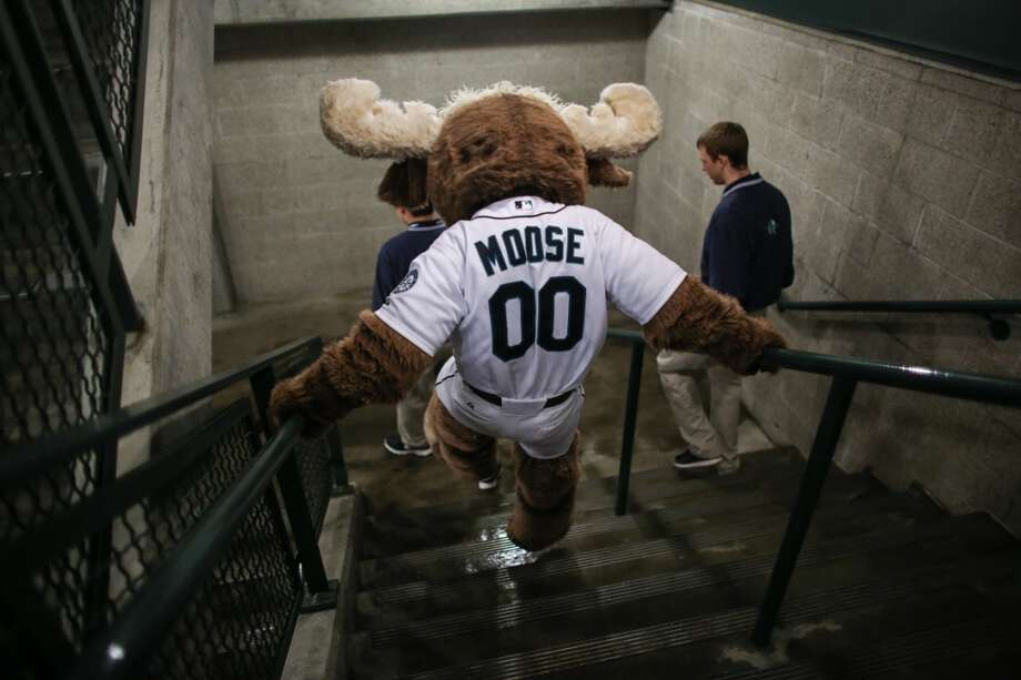 The Mariner Moose makes his way through the stadium during the Seattle Mariners home opener on Tuesday, April 8, 2014 at Safeco Field. The Mariners defeated the Los Angeles Angels 5-3. (Joshua Trujillo, seattlepi.com) Photo: JOSHUA TRUJILLO, SEATTLEPI.COM