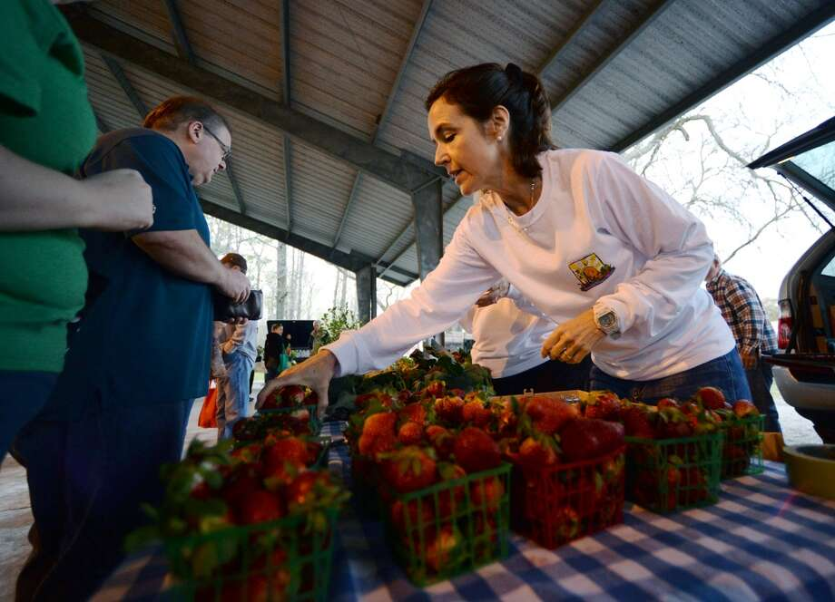 Sarah Parmer tends to a booth at the Beaumont Farmer's Market on Saturday morning. The Beaumont Farmer's Market opened for business at the Beaumont Athletic Complex on Saturday morning. Photo taken Saturday, 3/15/14 Jake Daniels/@JakeD_in_SETX