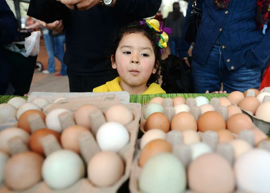 Natalie Escobar, 4, looks at eggs at the Sunny Knoll Farm table Saturday. The Beaumont Farmer's Market opened for business at the Beaumont Athletic Complex on Saturday morning. Photo taken Saturday, 3/15/14 Jake Daniels/@JakeD_in_SETX