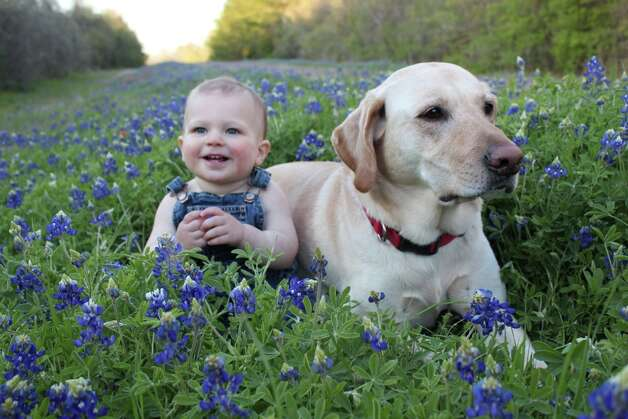 Readers' favorite wildflower photosSend your flower shots to photos@chron.com This photo: Elijah Day and Cali in Navasota Photo: Reader Submission