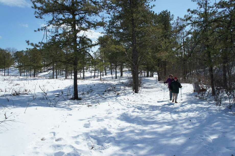Photo by Gillian Scott. Walkers navigate an icy patch in the Albany Pine Bush Preserve on March 7, 2014.