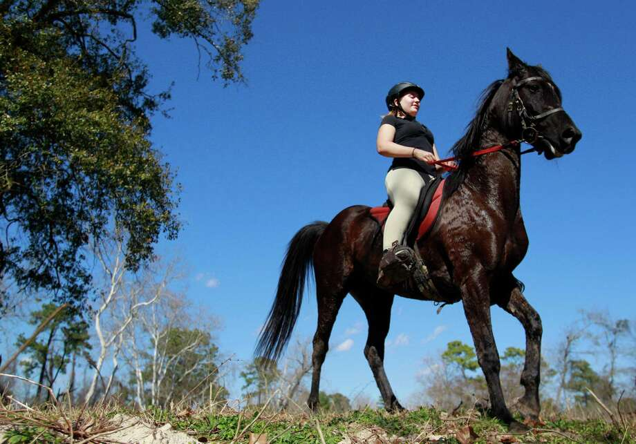 Endurance rider Devan Horn fell in love with horses as a child. When she isn't competing or working on her college degree, she trains horses like Jaaz, an Arabian owned by Justin Nelzen. Photo: Melissa Phillip, Staff / © 2014  Houston Chronicle