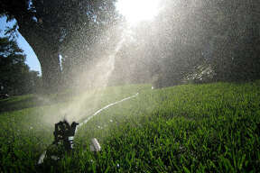 Watering with sprinklers will be curtailed to one day every other week under Stage 3 restrictions, which look likely for 2014.