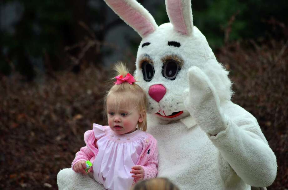 The Easter egg hunt slowed after the arrival of the Easter Bunny on the Darien Community Association front lawn on Friday, April 11. Photo: Megan Spicer / Darien News