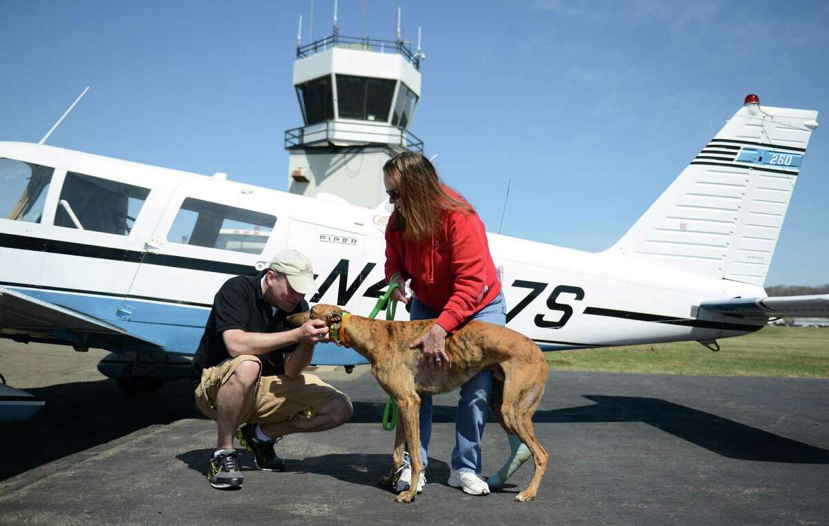 Pilot Jason Hilt and Greyhound Rescue & Rehab Founder Christine Johnson embrace Gunner, an injured greyhound, after he and one other injured greyhound and two racing greyhound dogs arrived at Danbury Airport in Danbury, Conn. Saturday, April 12, 2014. The Brave Tide Foundation flew the dogs in from West Virginia to Greyhound Rescue & Rehabilitation in Cross River, N.Y., which is providing medical care for the two injured dogs that would have otherwise been euthanized.