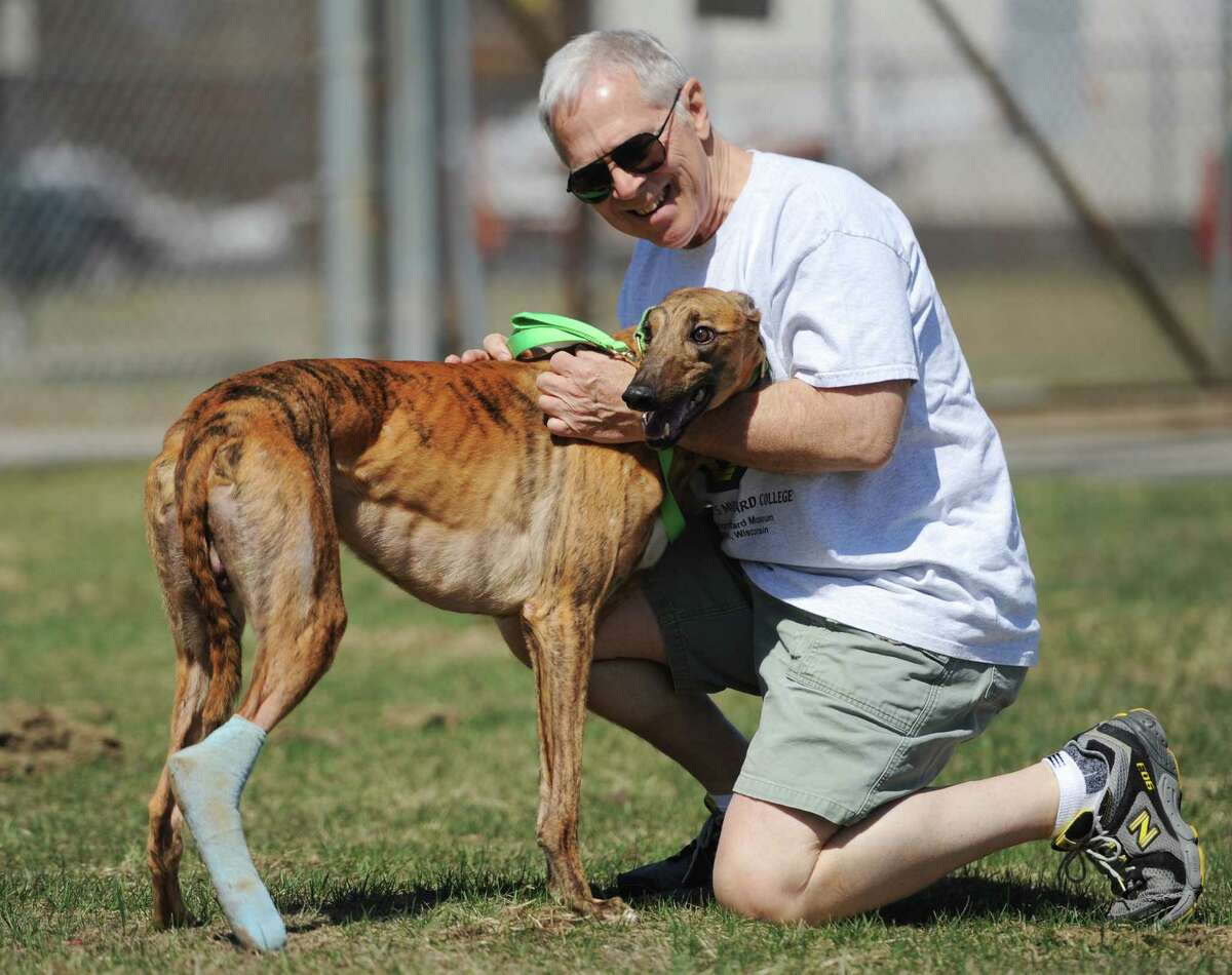 Geoff Harrington, of Ridgefield, embraces Gunner, an injured greyhound, after a plane with two racing and two injured greyhound dogs arrived at Danbury Airport in Danbury, Conn. Saturday, April 12, 2014. The Brave Tide Foundation flew the dogs in from West Virginia to Greyhound Rescue & Rehabilitation in Cross River, N.Y., which is providing medical care for the two injured dogs that would have otherwise been euthanized.